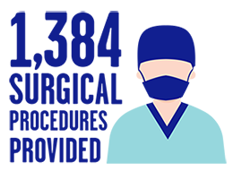 1384Surgical 260W